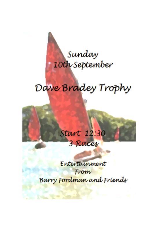 Dave Bradey Poster 17